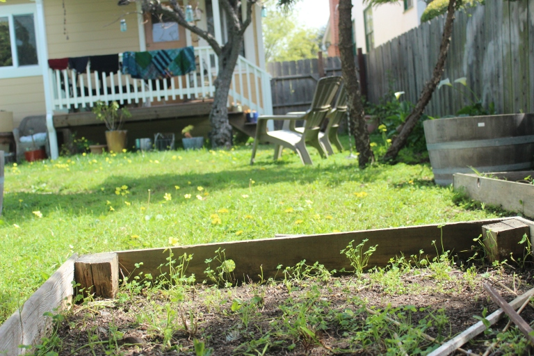 Weedy garden bed looking at house